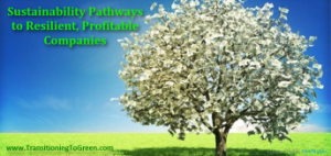 Sustainability Pathways to Resilient Profitable Companies_sm
